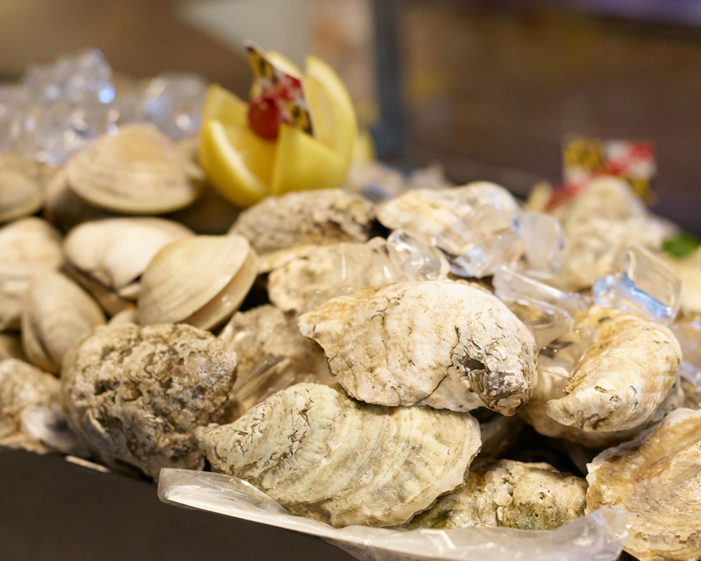 Oysters-unshucked