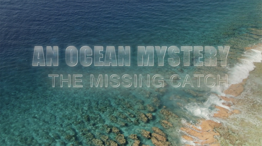 An Ocean Mystery The Missing Catch
