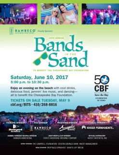 Bands in the Sand 2018